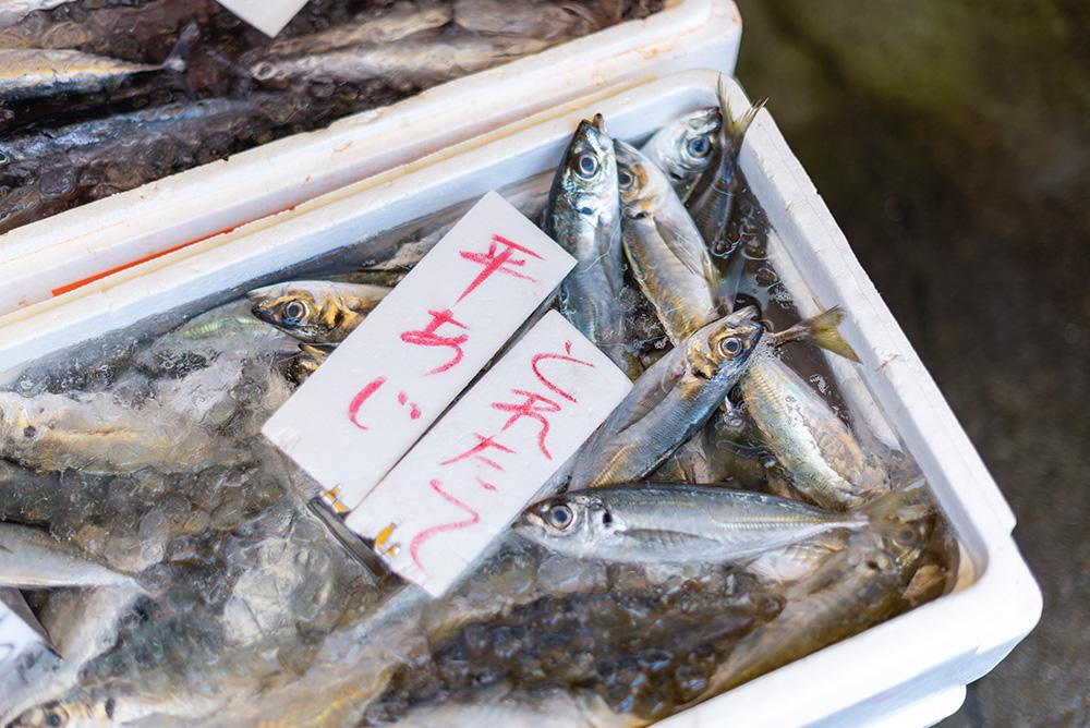 写真:氷に浸かった新鮮な魚。「とれたて平あじ」という手書きのPOPがついている