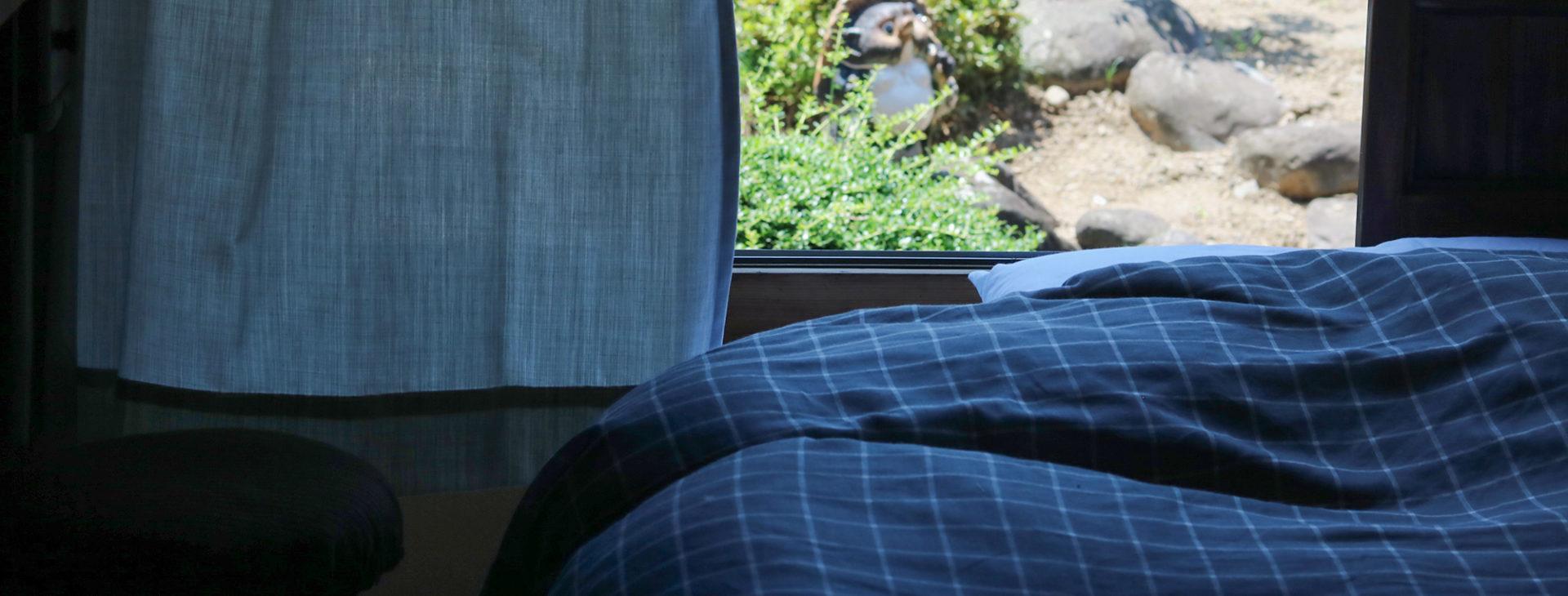 写真:窓の外の光が入り、薄明るい部屋。白いカーテンと紺色のベッドカバー。